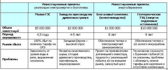 Примеры инвестиционных проектов