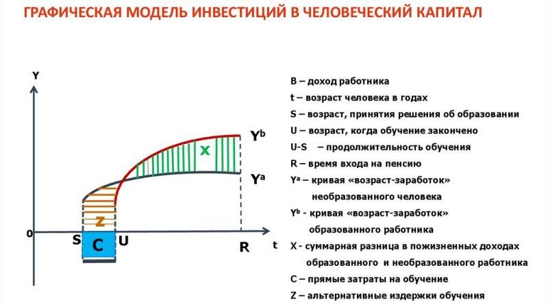 Модель инвестиций в человеческий капитал