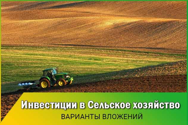Инвестиции в сельское хозяйство